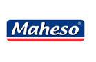 Distribución en Málaga de productos congelados Maheso