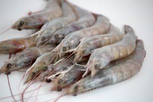 Langostino crudo - Cocelang especialistas en mariscos congelados