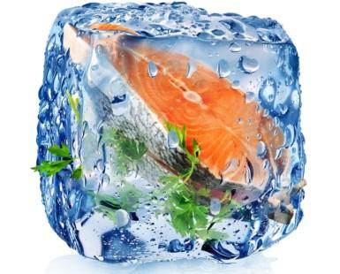 importancia de productos congelados en hostelería