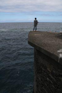 vertical - la potencia del pescado y marisco