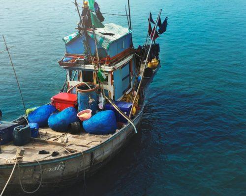 marisco de temporada