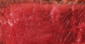 ¿Eres más de carne o de pescado? - Carne o Pescado - Hostelería