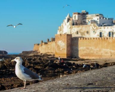 Málaga, zona de paso para los marroquíes residentes en Francia