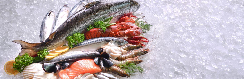 Como Congelar Pescado En Casa